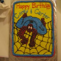 Spiderman I really had a time with this cake. It is all bc icing and all the work is freehand. The cake is fudge marble with bc. I wasn't...