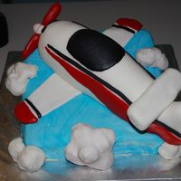 Airplane This cake was made for a good friend that actually built a plane similar to this as a child. The blue base is cake. The airplane and clouds...