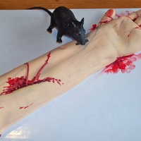 Severed Arm Cake Severed arm. Rat is plastic.