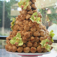 "Croquembouche We made this croquembouche for a contest sponsored by the Girl Scouts and won ""most creative."" All the desserts had to be made..."