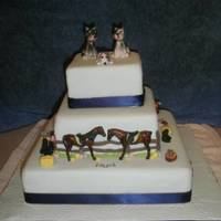 Country Wedding Cake A country wedding and the brides mother took the cake on a 7 hour trip. Sky blue icing with all things related to horses. The horses were...