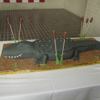 Mr. Gator This big guy was carved from multiple 12x18 cakes. All chocolate with chocolate buttercream filling. He ended up being around 3 1/2 feet...