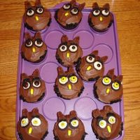Owl Cupcakes Chocolate cupcakes with buttercream frosting. Mini oreos eyes, mini M&m's, banana runt beaks