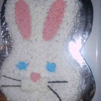 Bunnycake.jpg This was my first character cake...not great, but still sold for $20 at a bake sale.
