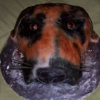 3-D Dog Head  This is my first carved cake. I tried to make it look like a boxer dog but it had its flaws. I learned a lot from this cake the next time I...