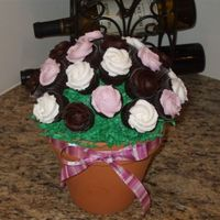 Bouquet Mini cupcake bouquet. Dark chocolate fudge cake with chocolate icing and vanilla buttercream icing. I used a 6 inch flower pot, and tip 1M...