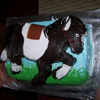 Pony Cake The saddle is fruit leather and the tail and main are licorice. Thanks for looking.