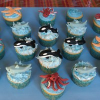 Oceans Creatures I made these Seaworld cupcakes for my little boy's end of yr school party. The children were in aww with shamu. I really enjoyed...