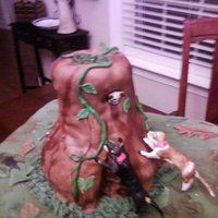 David's Cake   This is a cake for a groom that is crazy about his coon dogs. Found this pic on CC.