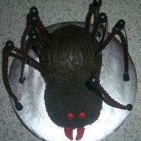 Spider Cake This cake is a four-layer carved cake. It is a devils food cake decorated with dyed chocolate buttercream frosting. The spider legs are...