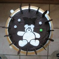 Teddy Bear Pattern Cake