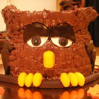 Owl Cake First time carving, chocolate cake chocolate frosting. I think it's cute but maybe it looks too much like a furby? Haha, oh well. I...