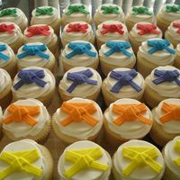 Martial Arts Belts Cupcakes