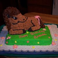 Amanda's Horse  this was done for my friends daughter. i used the 3-d lamb pan (with the help of tripletmom's directions!!) and am pretty pleased with...