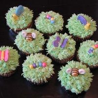 Bug Cupcakes Cupcakes with grass and fondant bugs.