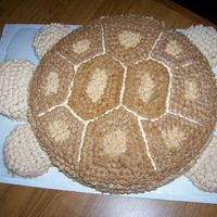 Tricky Cake This is a cake I made for a friend who's knick name is turtle. Tricky is our pet Spur Thigh and I just took the design idea from him...