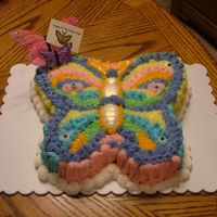 Butterfly Cake This was a buttercream cake made from a plastic mold for a little girl who loves butterflies & colors.