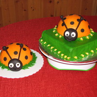 Orange And Black Ladybugs These cakes were done for my nieces 5th birthday. She was very specific about wanting black and orange ladybugs-not red and black. She also...