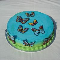 Butterflies Buttercream frosting and chocolate/candymelt decorations