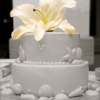 Seashells Wedding Cake Covered in BC, seashells made out of white chocolate, fresh flower on top.