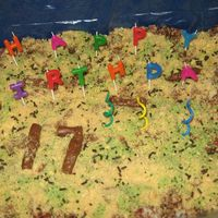 Kitty Litter Box Cake Made this for my daughter's 17th birthday.