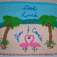 Practice Cake This was my first attept at an 11 x 15 cake. Done all in buttercream. It was my most detailed cake and I think my best cake so far. I think...