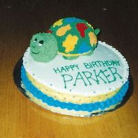 Turtle Sorry about the blurry photo. I made this cake for my son's 1st birthday. (he is 9 now) Super fun to do. Made the Turtle shell out of...