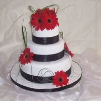 Churr_009.jpg 3 tier chocolate mud cake covered with choc ganache then covered in rolled white icing.Fresh Gerberas and bear grass.