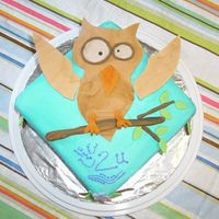 "Grammy's Owl Cake Grammy likes owls, so, this is what we did. She also says ""happy to you"" for ""happy birthday"", hence the smily face, #2..."