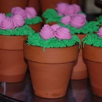 Flower Pot Cakes These were champagne, strawberry with berry filling and chocolate with chocolate mousse. Decorated with MMF and buttercream.