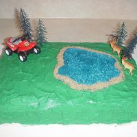 Outdoor Birthday Cake  It's a single layer yellow cake with buttercream icing. I used brown sugar for the sand around the lake. This was before we wrote &...