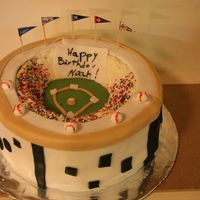Baseball Stadium  This was for my nephew's 9th birthday. Chocolate cake with fresh strawberries and vanilla custard filling. This was not so hard to do...