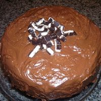 Peppermint Pattie Cake This was such a yummy cake! I made it for Christmas dessert! It is a chocolate cake with a peppermint buttercream filling! It was my first...