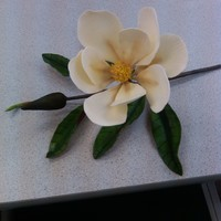 Gumpaste Magnolia Gumpaste magnolia that I made in a Nicholas Lodge class