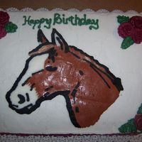 Birthday Horse  BC horse transfer, it was a last minute cake ordered for a christmas eve birthday. The birthday girl is diabetic so the least amount of bc...
