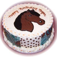 "Megan's Horse Cake 9"" french vanilla cake- FBCT horse made to look like daughter's favorite horse- I tried the edible images paisley design sheets..."