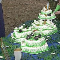 Pastor App Day  This Cake has 16 hours in it from makeing sheep from icing we had our Pastor Appreacion Day at the park so we had a lot involved in making...