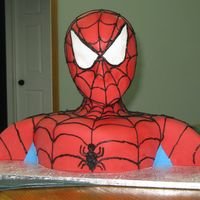 Spiderman Spiderman cake for my 4 year-old's birthday. He was thrilled!