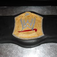 Wwe Champ Belt For my son. Wasn't happy with the gold color but he luved it.