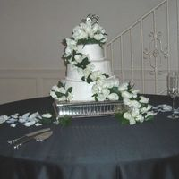 White Cake With White Roses-- Classic! For a friend's wedding. White cake, white buttercream, fresh roses cascading down the cake and rose petals sprinkled on the table. I...