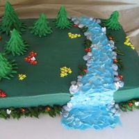 Nature Scene Engegament cake for two outdoor lovers. 1/2 sheet, white chocolate cake, raspberry cream cheese mousse filling & cream cheese icing....