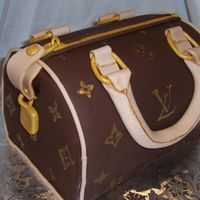 Louis Vuitton Purse My first purse cake! Choc. fondant.