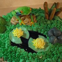 "Frog Cake 10"" tiramisu cake, covered in WBC BC, decorated to be a frog/pond/grass scene. Fondant accents, piping gel pond, RI lily flowers (..."