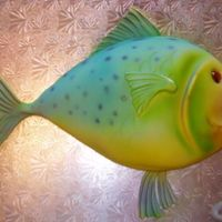 Fish Cake The fish cake I made in Bronwen Weber's Airbrush/Sculpting class. What a fantastic experience! First time Airbrushing