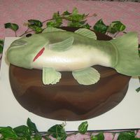 Mounted Bass Grooms Cake   fondant covered fudge cake base with fondant covered bass. Fins and such are gp.