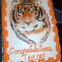 Airbrushed Tiger   BC cake with airbrushed tiger using Roland Winbecklers design.