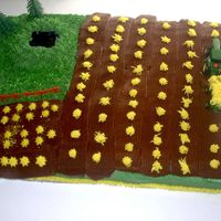Farm Half sheet cake decorated in bc icing, half vanilla, half chocolate. The pond is piping gel, this was the first time I've colored...