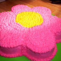 Hot Pink Daisy Cake  I made this for my niece's b-day. This is one of the first cakes that I've ever decorated..sure did learn alot from it. yellow...