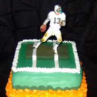 Miami Dolphins Did this cake for my brother yesterday, and the Miami Dolphins won !!!