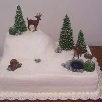 Winter Wedding Cake This was for a small wedding of about 40 people. The bride and groom are the outdoors type and they love winter, so they wanted a winter...